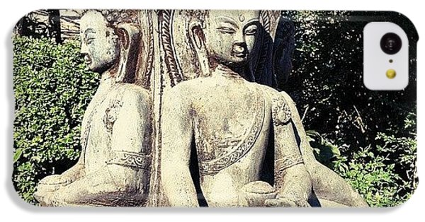 Buddha Park IPhone 5c Case