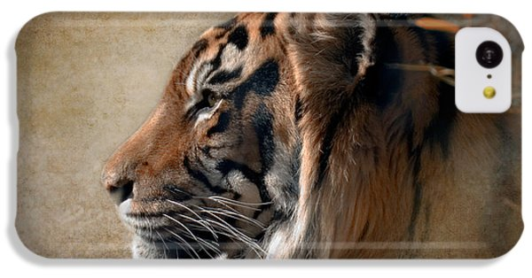 Tiger iPhone 5c Case - Burning Bright by Betty LaRue