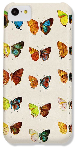 Butterfly Plate IPhone 5c Case by Pati Photography