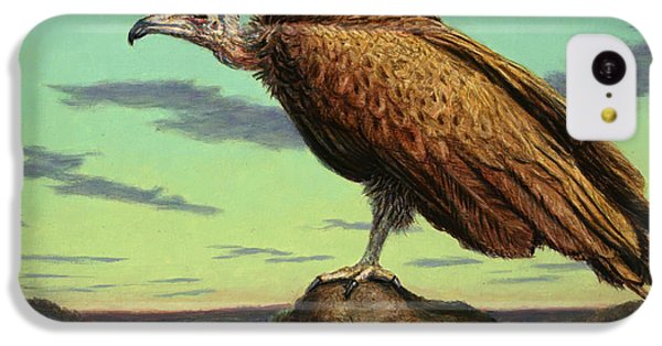 Buzzard iPhone 5c Case - Buzzard Rock by James W Johnson