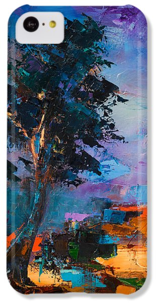 By The Canyon IPhone 5c Case