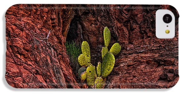 Cactus Dwelling IPhone 5c Case by Mark Myhaver