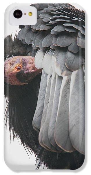 Condor iPhone 5c Case - California Condor by Angie Vogel