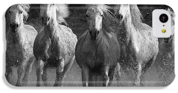 White iPhone 5c Case - Camargue Horses Running by Carol Walker