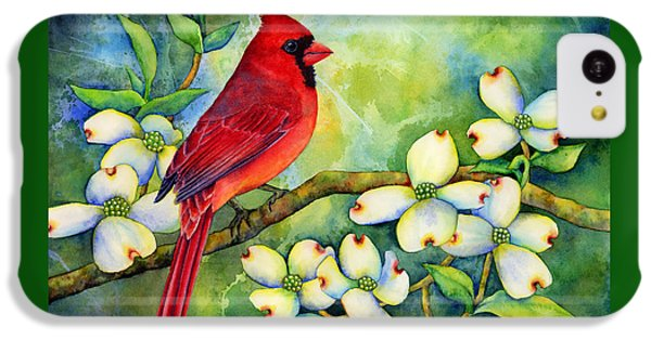 Cardinal On Dogwood IPhone 5c Case by Hailey E Herrera