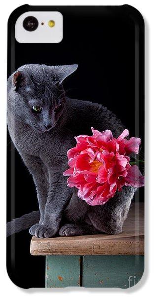 Tulip iPhone 5c Case - Cat And Tulip by Nailia Schwarz