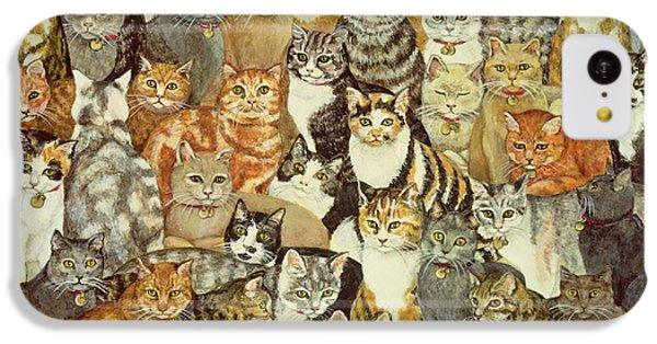 Cat Spread IPhone 5c Case