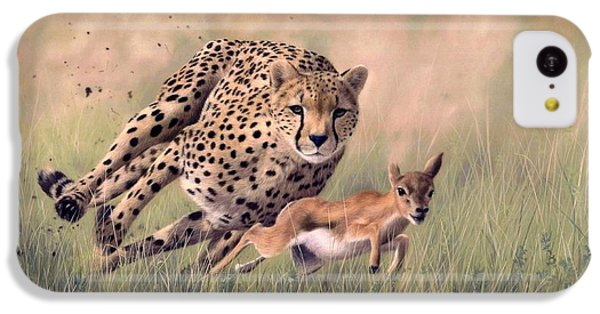 Cheetah iPhone 5c Case - Cheetah And Gazelle Painting by Rachel Stribbling