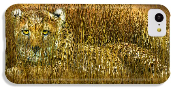 Cheetah - In The Wild Grass IPhone 5c Case by Carol Cavalaris