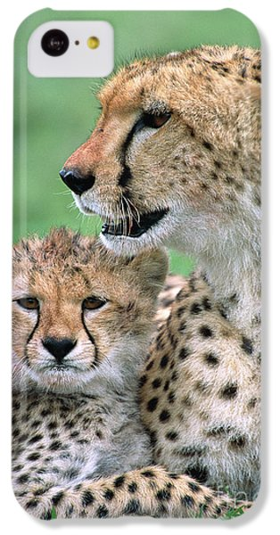 Cheetah Mother And Cub IPhone 5c Case