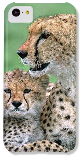 Cheetah Mother And Cub IPhone 5c Case by Yva Momatiuk John Eastcott