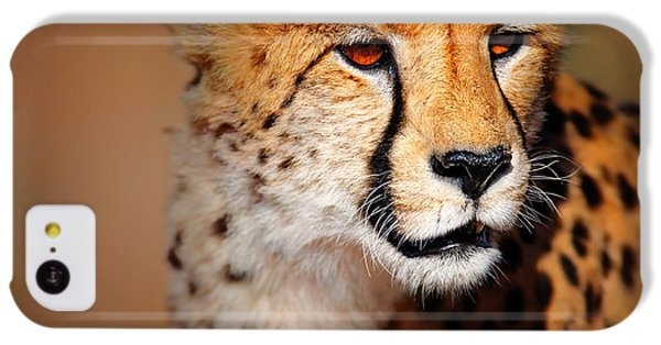 Cheetah Portrait IPhone 5c Case by Johan Swanepoel