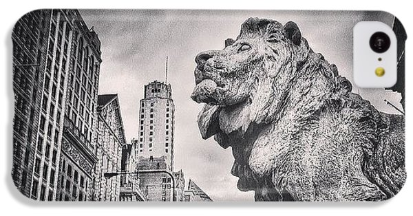 Architecture iPhone 5c Case - Art Institute Of Chicago Lion Picture by Paul Velgos