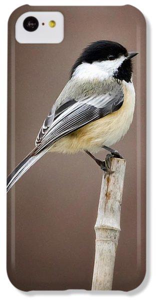 Chickadee IPhone 5c Case by Bill Wakeley