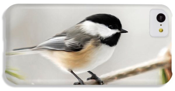 Chickadee IPhone 5c Case