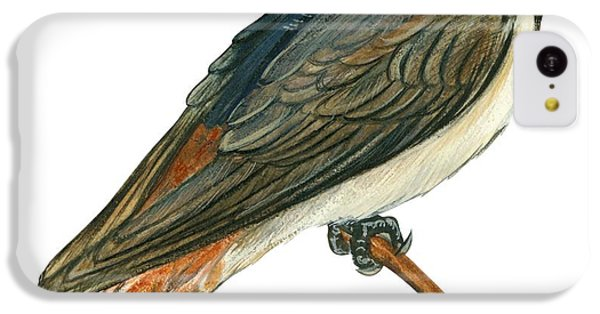 Cliff Swallow  IPhone 5c Case by Anonymous