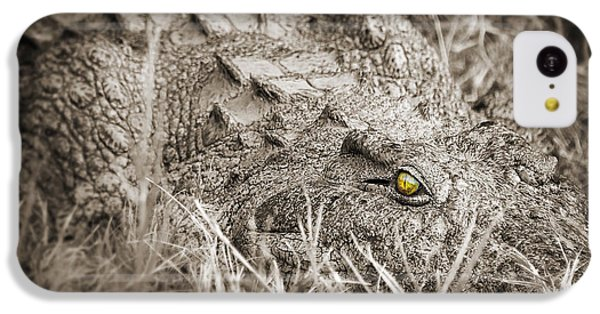 Crocodile iPhone 5c Case - Close Crocodile  by Delphimages Photo Creations