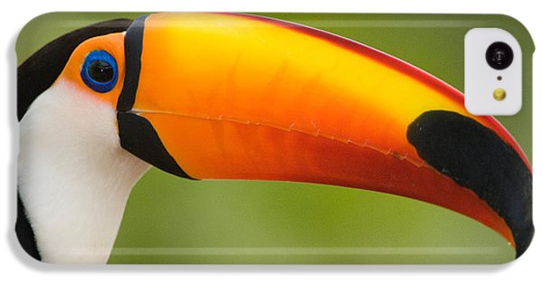 Toucan iPhone 5c Case - Close-up Of A Toco Toucan Ramphastos by Panoramic Images