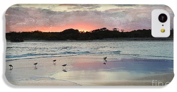 Coastal Beauty IPhone 5c Case by Betty LaRue