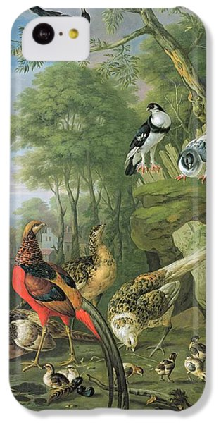 Magpies iPhone 5c Case - Cock Pheasant Hen Pheasant And Chicks And Other Birds In A Classical Landscape by Pieter Casteels