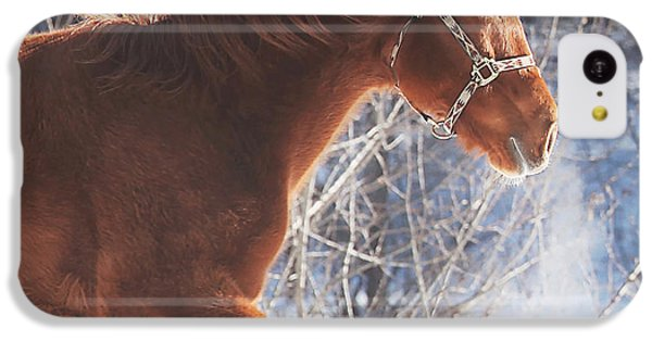 Horse iPhone 5c Case - Cold by Carrie Ann Grippo-Pike