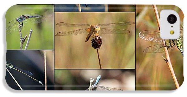 Collage Marsh Life IPhone 5c Case by Carol Groenen