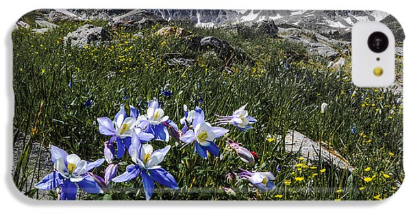 Colorado Columbines IPhone 5c Case by Aaron Spong
