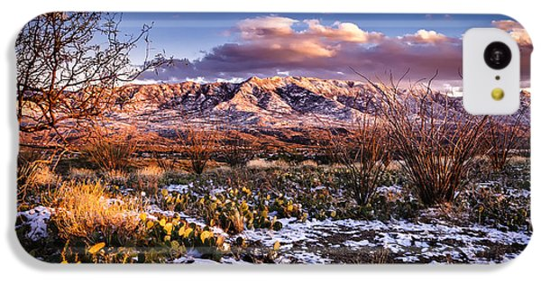 IPhone 5c Case featuring the photograph Colors Of Winter by Mark Myhaver