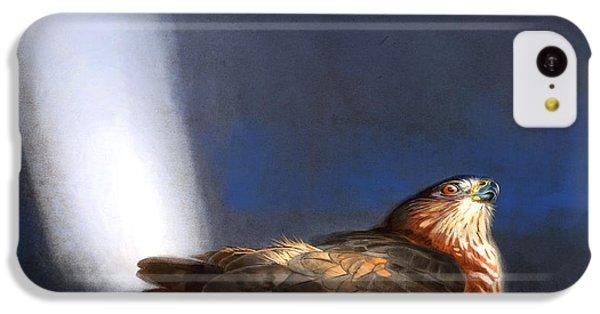 Hawk iPhone 5c Case - Coopers Hawk by Aaron Blaise
