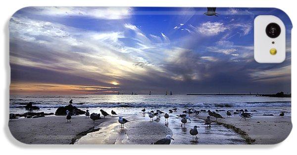 Corona Del Mar IPhone 5c Case by Sean Foster