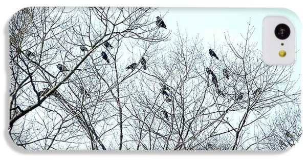 Crow Trees IPhone 5c Case