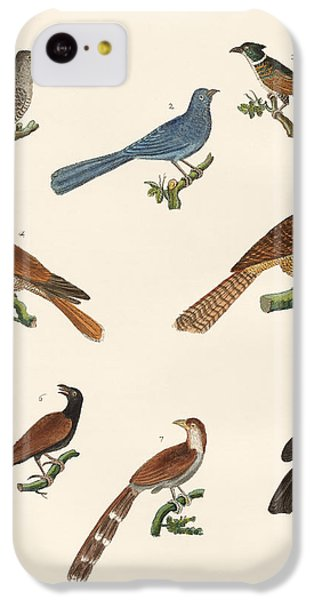 Cuckoos From Various Countries IPhone 5c Case