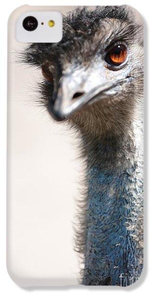 Curious Emu IPhone 5c Case by Carol Groenen