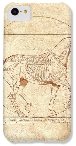 da Vinci Horse in Piaffe IPhone 5c Case