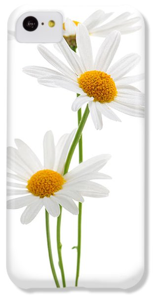 Daisies On White Background IPhone 5c Case by Elena Elisseeva