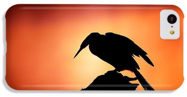 Anhinga iPhone 5c Case - Darter Silhouette With Misty Sunrise by Johan Swanepoel