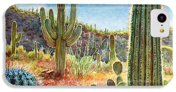 Desert iPhone 5c Case - Desert Beauty by Frank Robert Dixon