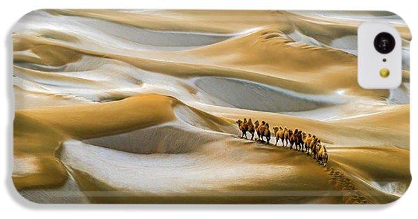 Desert Winter IPhone 5c Case