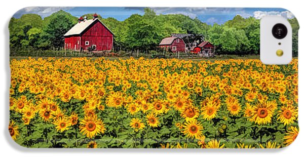 Door County Field Of Sunflowers Panorama IPhone 5c Case by Christopher Arndt