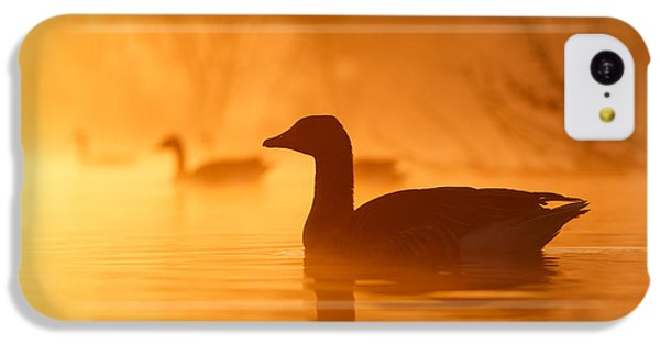 Goose iPhone 5c Case - Early Morning Mood by Roeselien Raimond