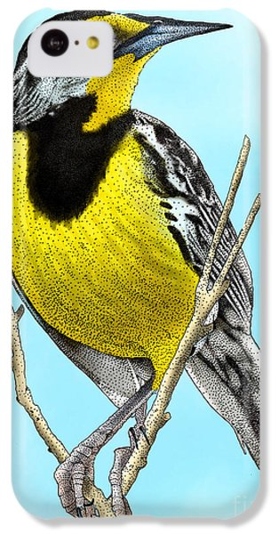 Eastern Meadowlark IPhone 5c Case by Roger Hall