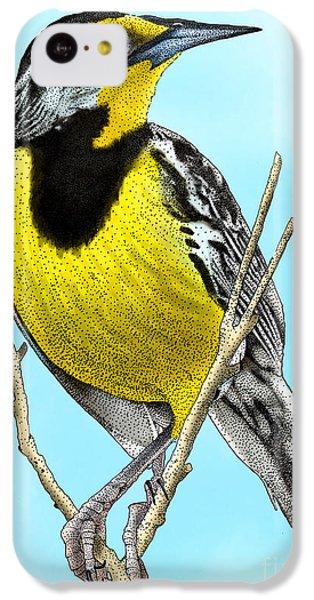 Eastern Meadowlark IPhone 5c Case