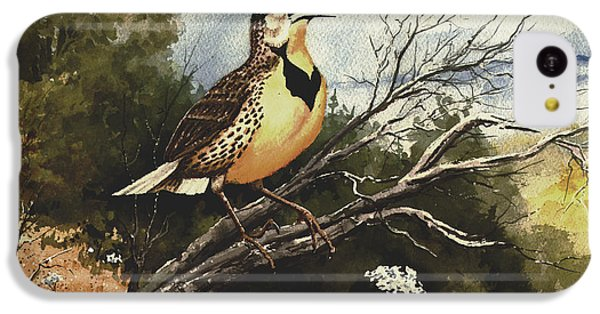 Eastern Meadowlark IPhone 5c Case