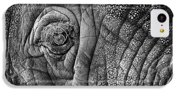 Elephant Eye IPhone 5c Case by Sebastian Musial