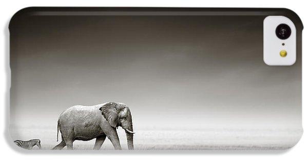Zebra iPhone 5c Case - Elephant With Zebra by Johan Swanepoel