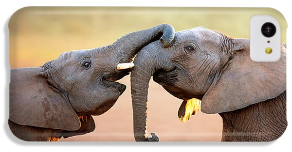 Nature iPhone 5c Case - Elephants Touching Each Other by Johan Swanepoel
