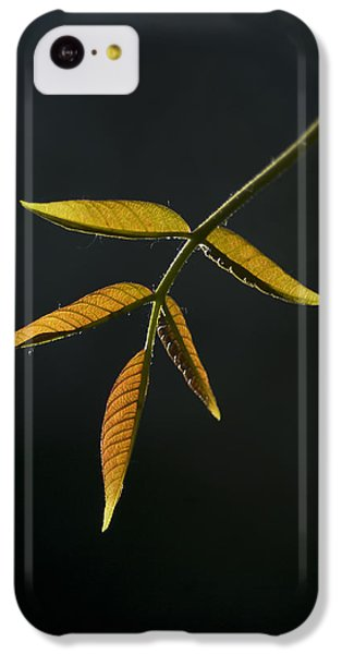 IPhone 5c Case featuring the photograph Emergence by Yulia Kazansky