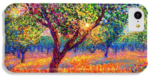 Impressionism iPhone 5c Case - Evening Poppies by Jane Small