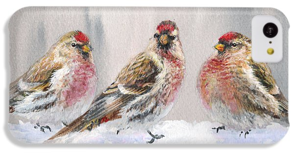 Snowy Birds - Eyeing The Feeder 2 Alaskan Redpolls In Winter Scene IPhone 5c Case