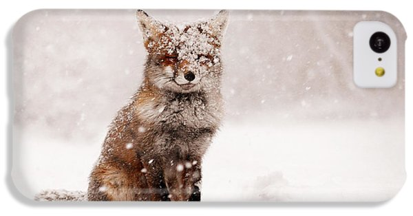 Fairytale Fox _ Red Fox In A Snow Storm IPhone 5c Case